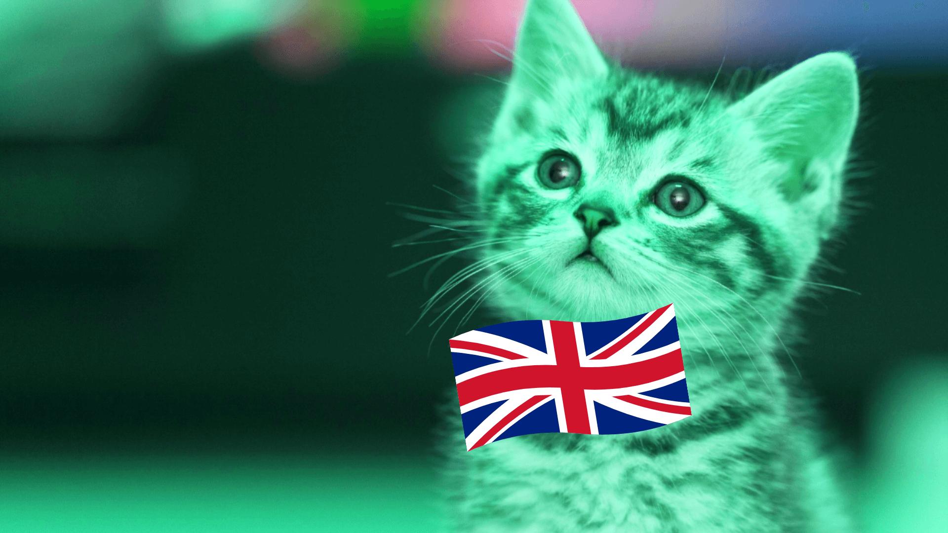 Бесплатные курсы английского языка с нуля онлайн